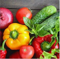 rote, gelbe und grüne Gemüse liefern viel Carotin